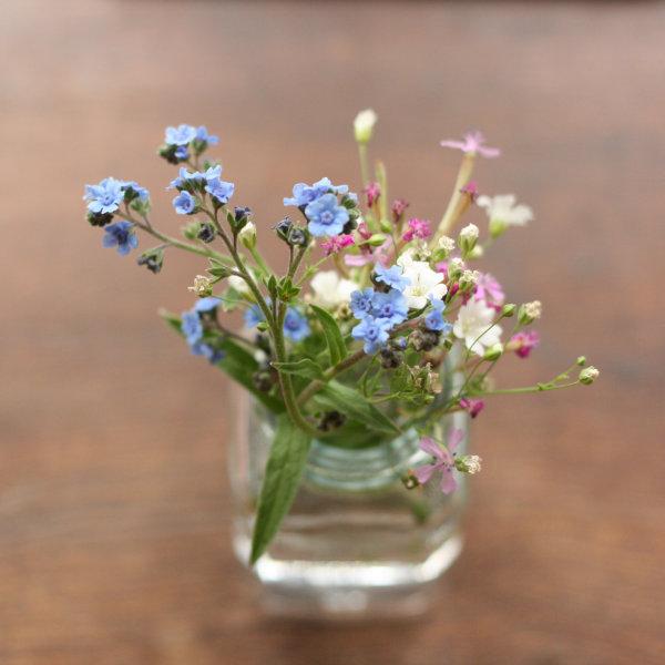 600deskflowers